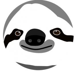 Phil the sloth, mascot of ISWI 2015